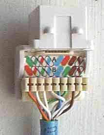 image013 jpg jacks usually have punch downs on the back or can be terminated out punch downs using special manufacturer s tools or even a cover for the connector